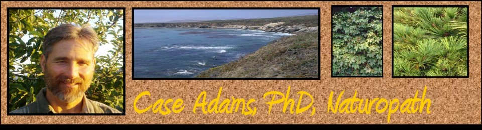 Case Adams PhD Naturopath